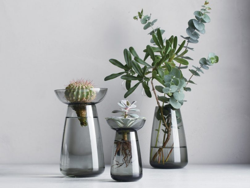 10 Modern Vases to Hold Everything From a Stem to a Bouquet