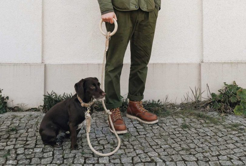 Eco-Friendly Leash with a Wooden Handle by band&roll