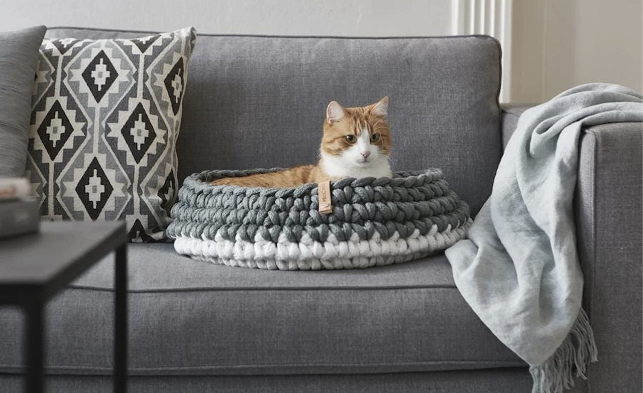 Cat laying in a pet bed, an essential for new pet owners