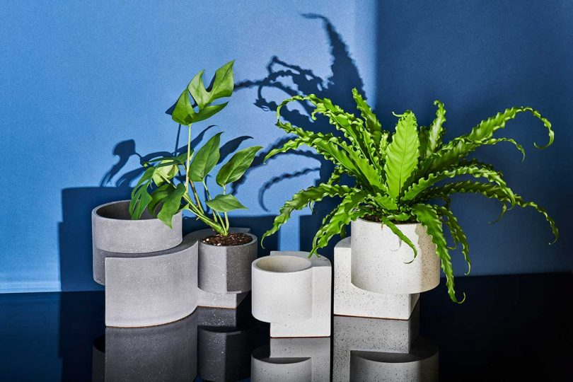 TORTUGA Introduces Platform Vessel Collection for Indoor + Outdoor Gardening