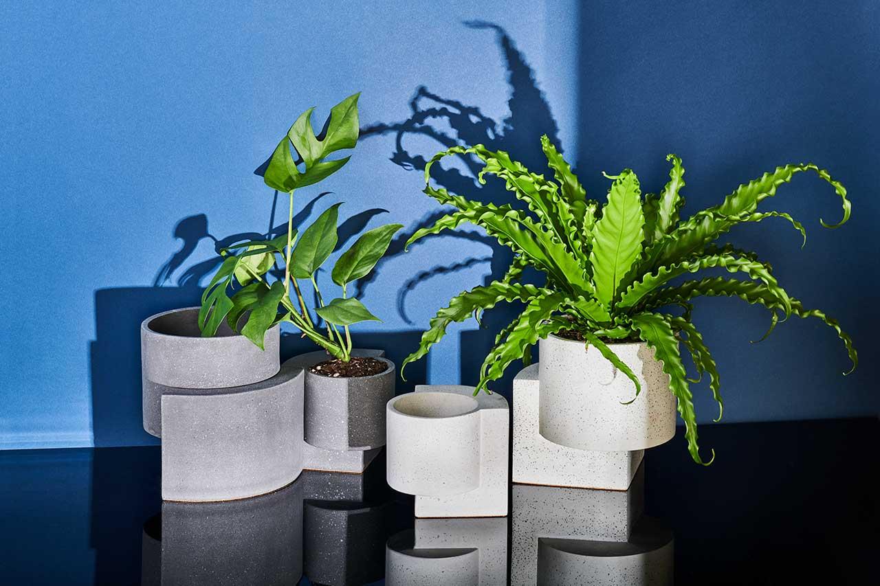 TORTUGA Introduces Platform Vessel Collection for Indoor + Outdoor Gardening