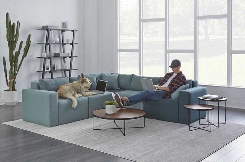 sofa, shelves