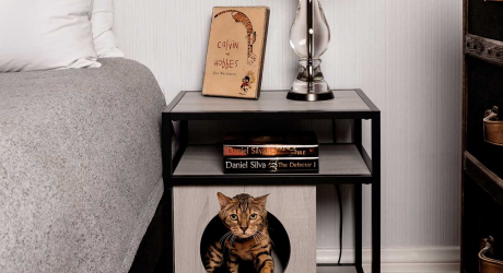Modern Cat Furniture You and Your Pet Will Love
