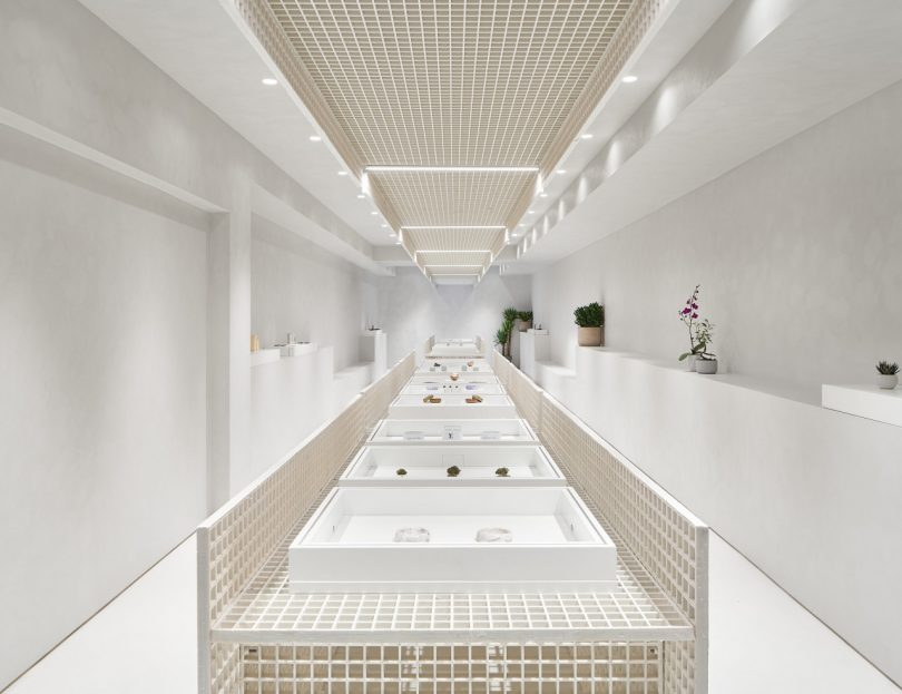 StudioAC Places a Modern Contact To the Hashish Retail Expertise