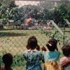 children looking through chainlink fence