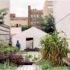 urban farming lot