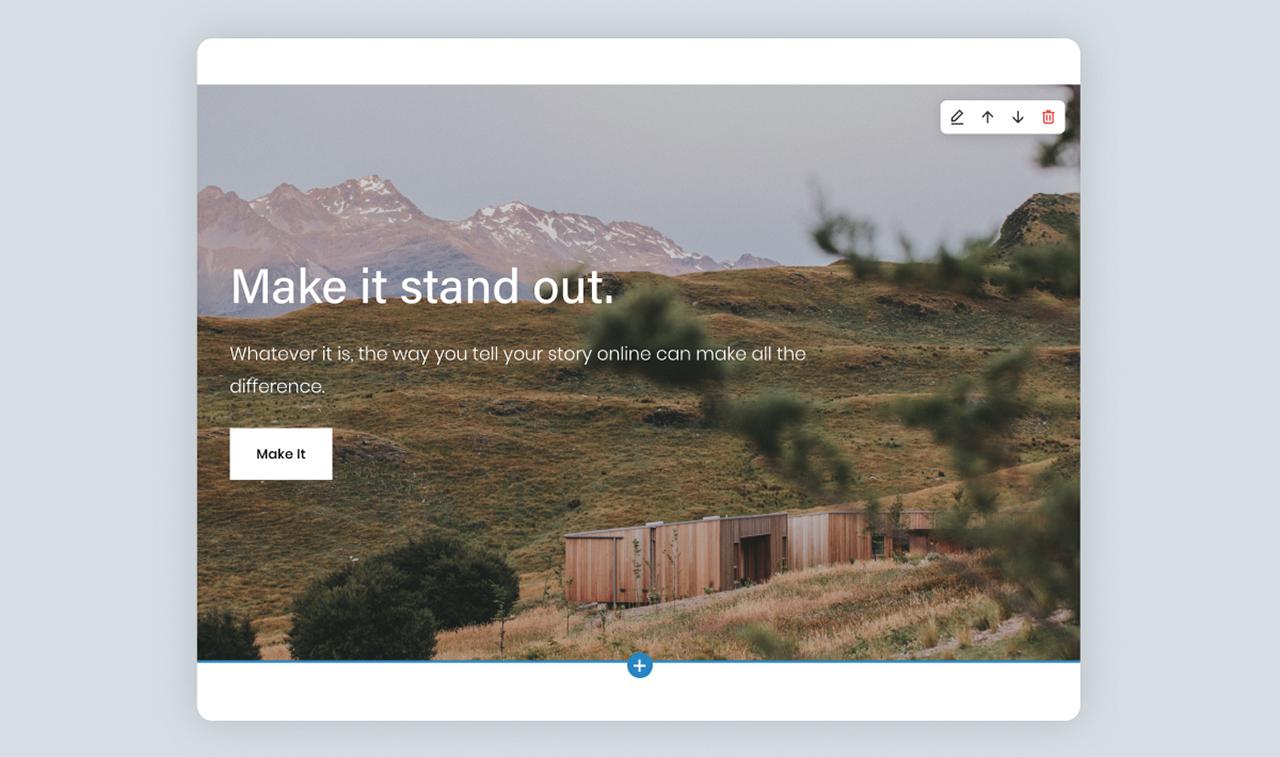 website capture