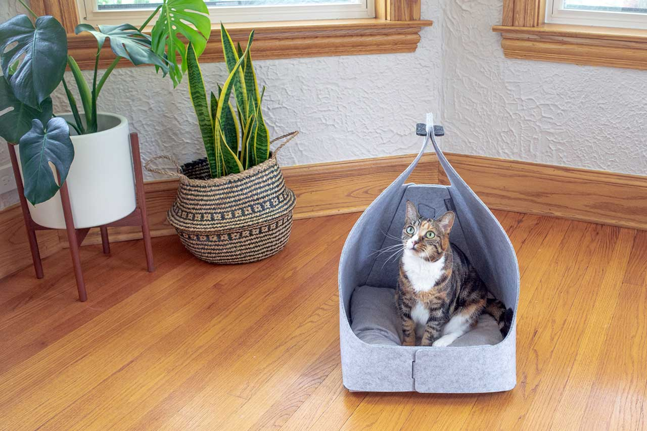 Up Your Pet's Nap Game With a Cozy New Bed