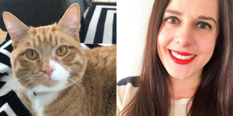 orange cat and woman
