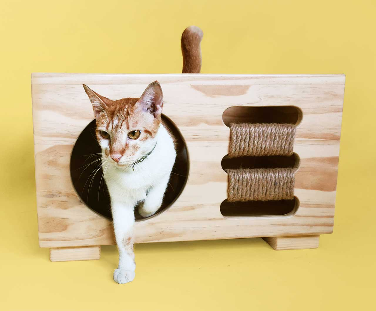 Modern, Multifunctional Furniture for Dogs + Cats Suitable for Any Room