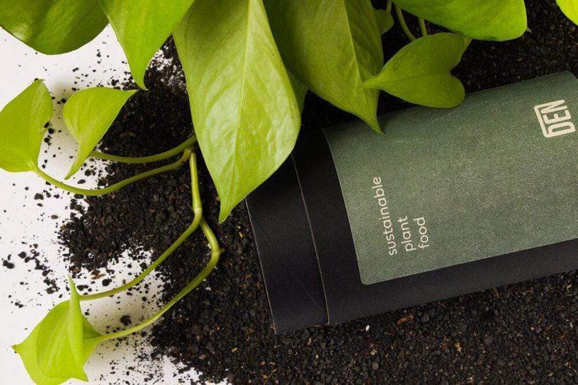 Hojas de plantas con tierra derramada y alimentos vegetales.