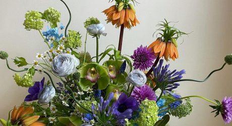 Take 5: A Battle of Creativity, Futuristic Flowers + More