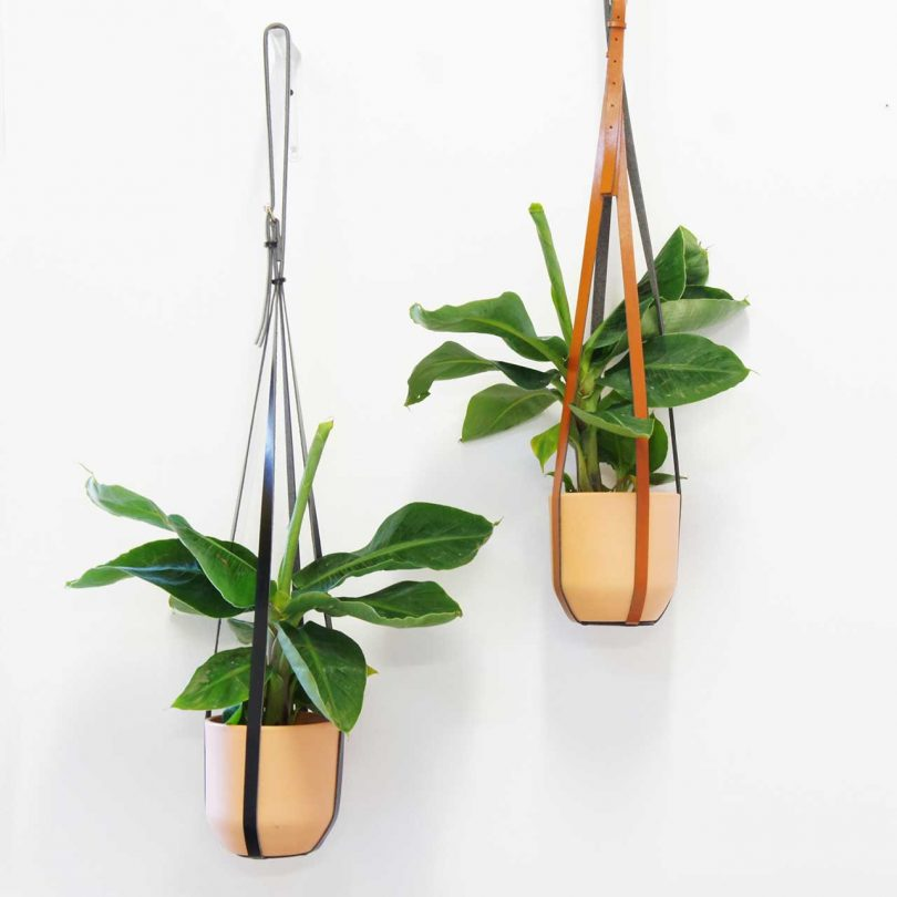 Leather strap hanging planters