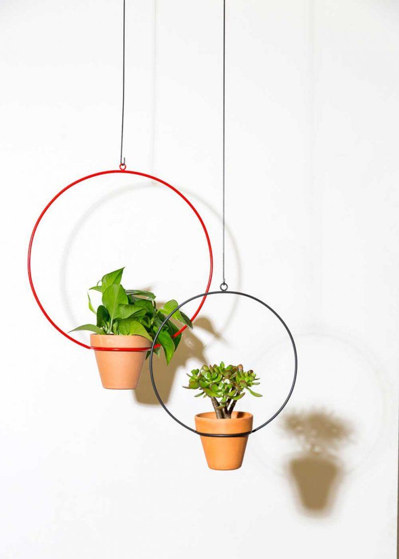 hanging ring planters