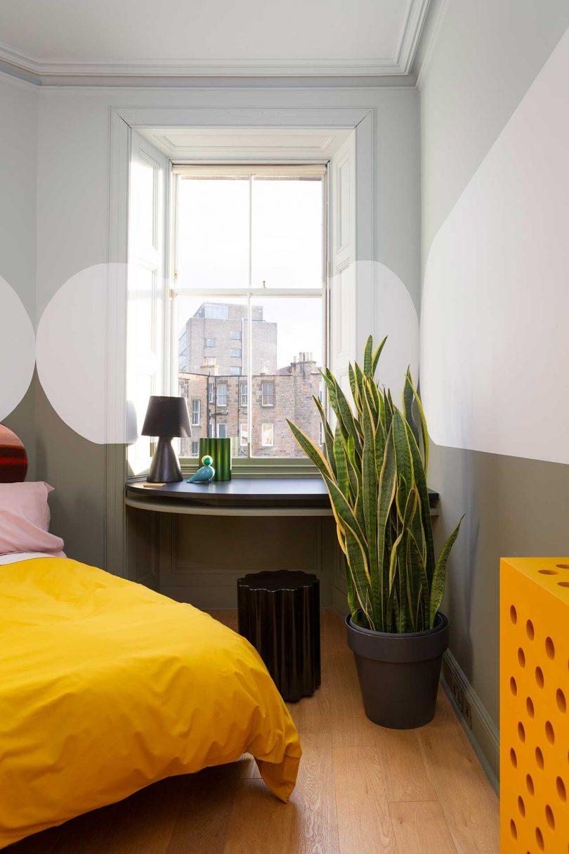 MM Bright Bold Sam Buckley Merchiston Apartment 16