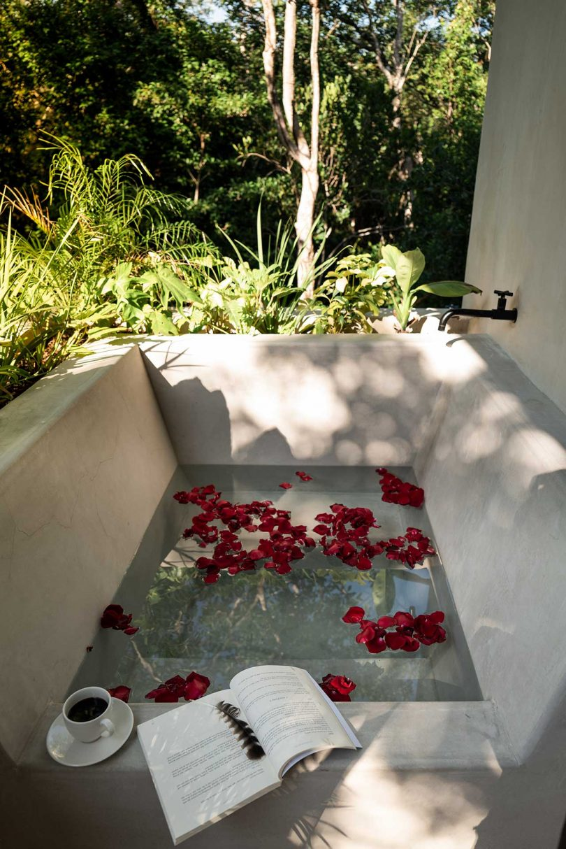 outdoor bathtub surrounded by plants