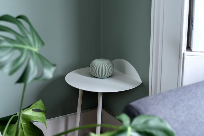 Green Hedgehog on small side table.