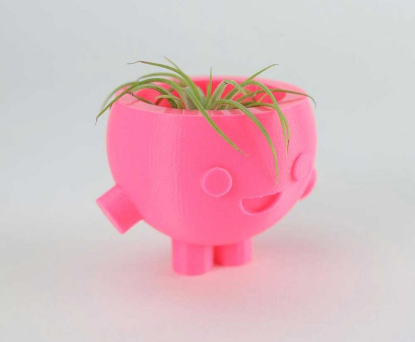 pink cartoon planter with succulent