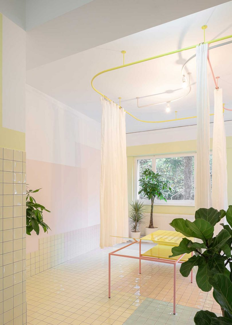 pastel tiled treatment room with plants and window