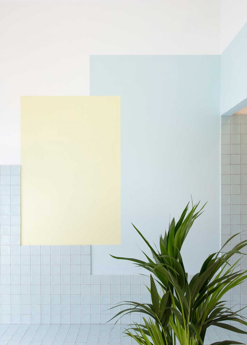 pastel tiled room with plant