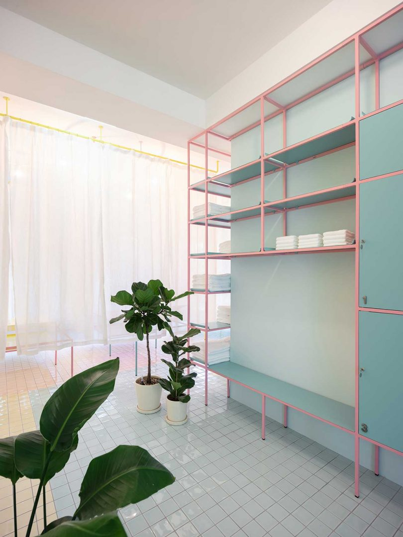 pastel tiled room with shelving and plants