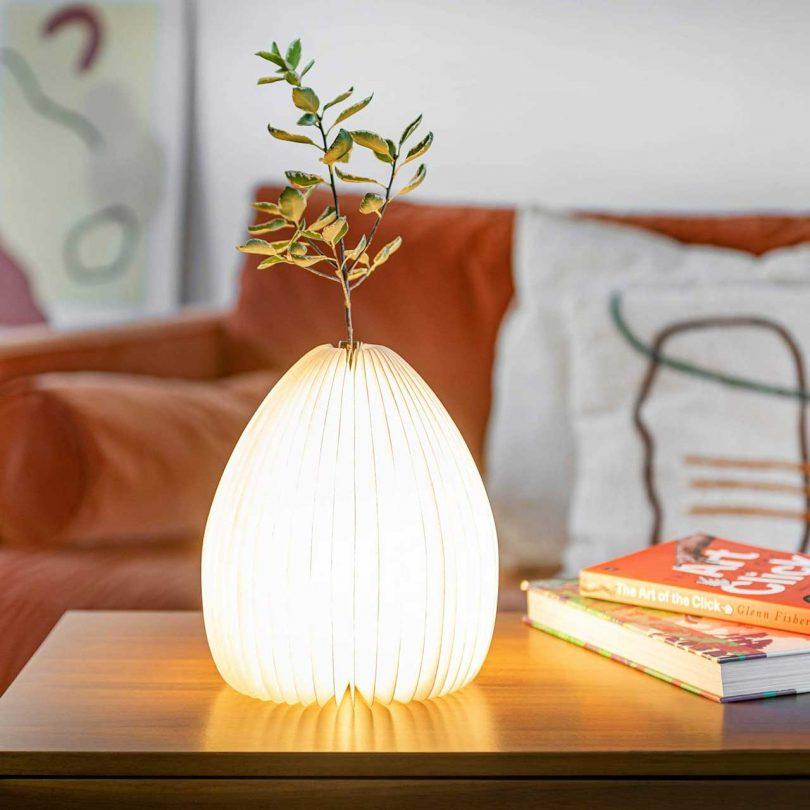 Smart Vase Light with vase holding branch