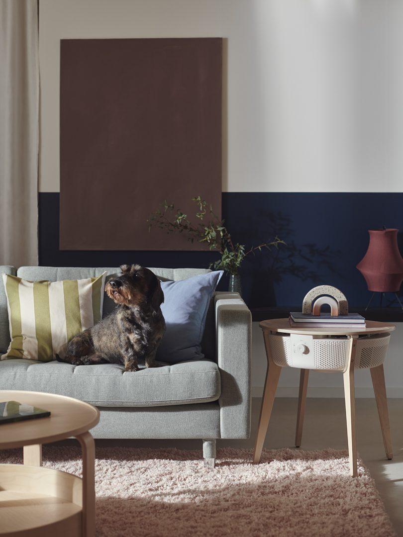 IKEA STARKVIND air purifier with dog on sofa