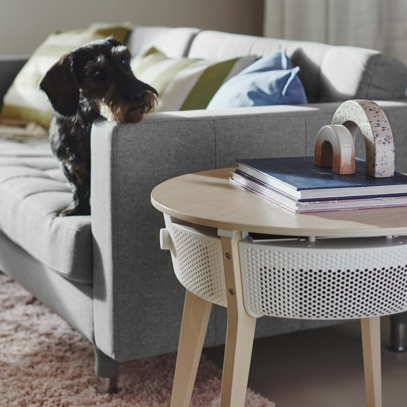 Dog on sofa looking at IKEA STARKVIND air purifier side table.