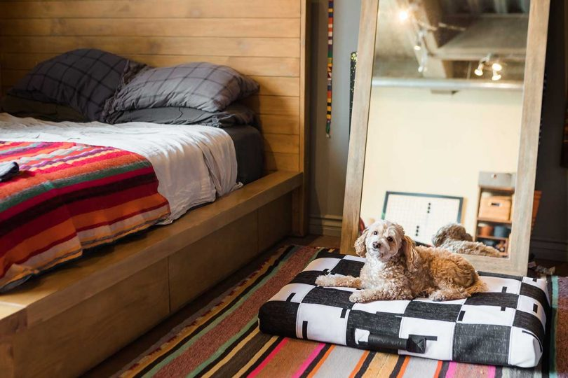 dog on a patchwork dog bed next to a bed