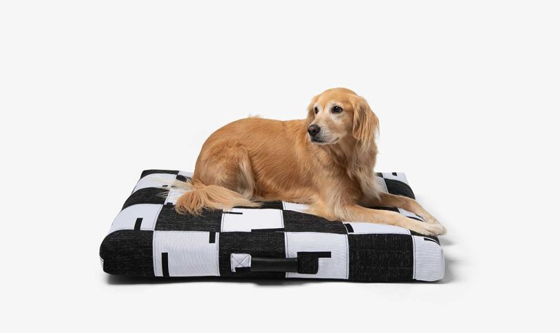 ReMade patchwork dog bed with golden retriever