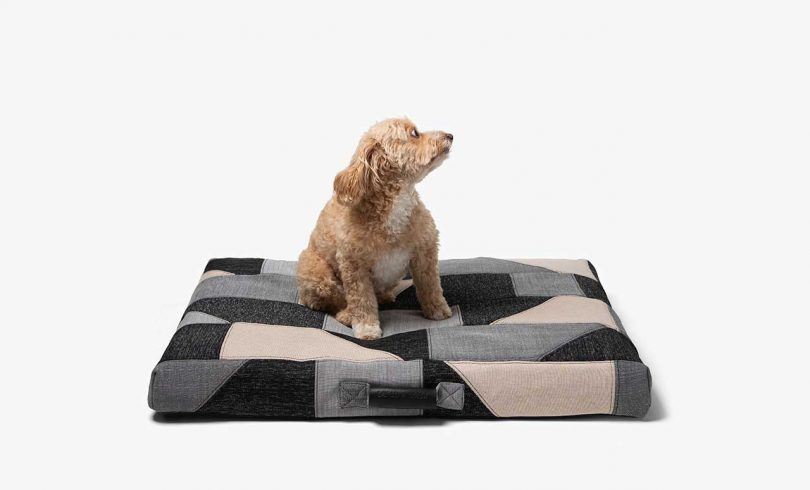 patchwork dog bed with dog on it