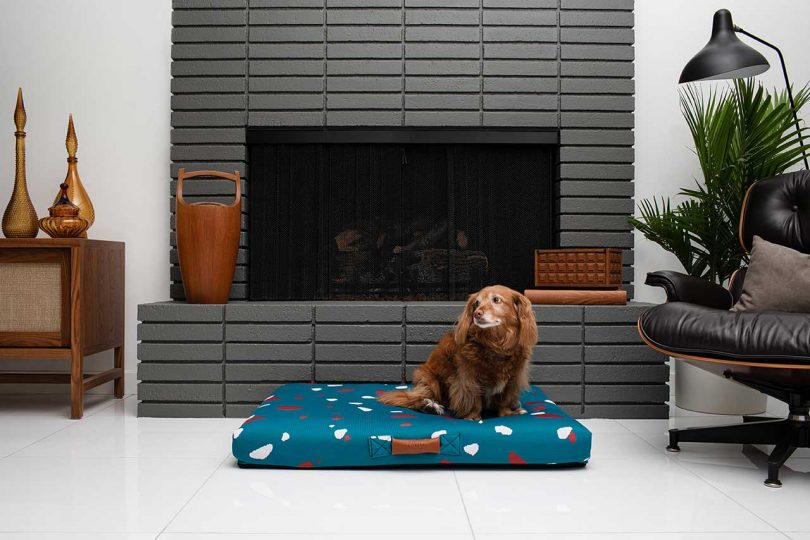 teal terrazzo dog bed with dog sitting on it in front of fireplace