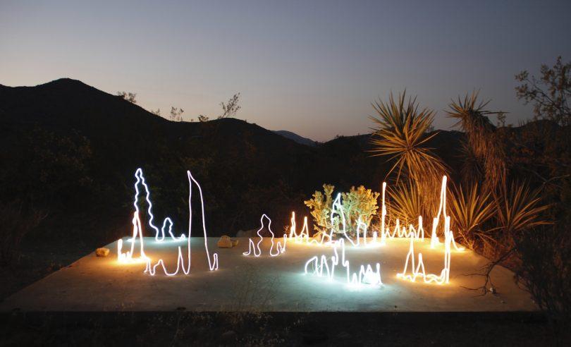 neon lights in nature