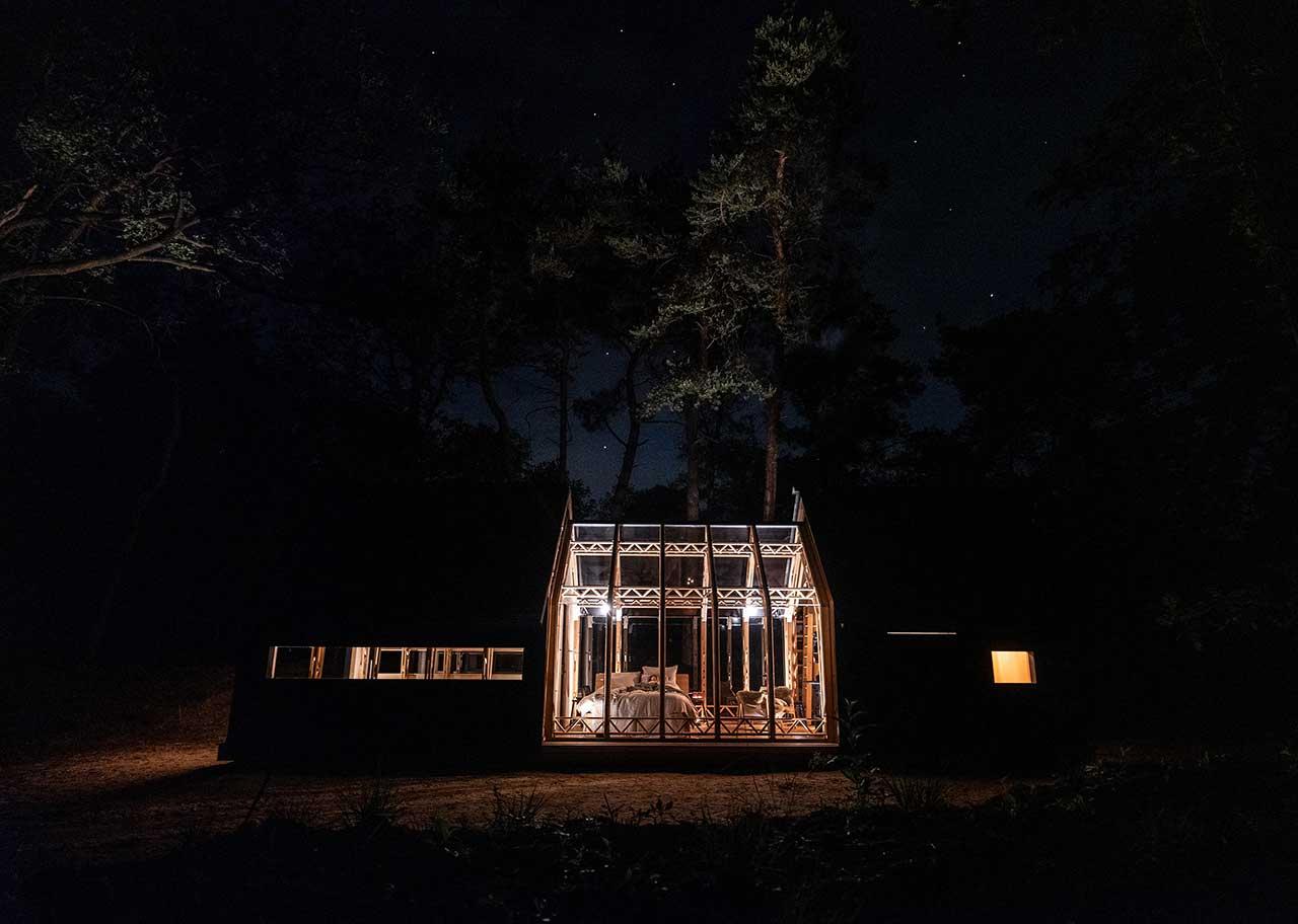 Landscape lighting - Garden