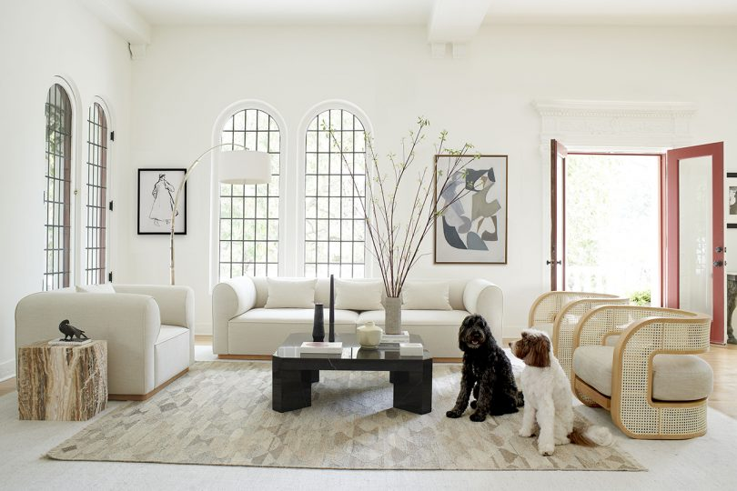 white living space with sofa, armchairs, coffee table, and two dogs