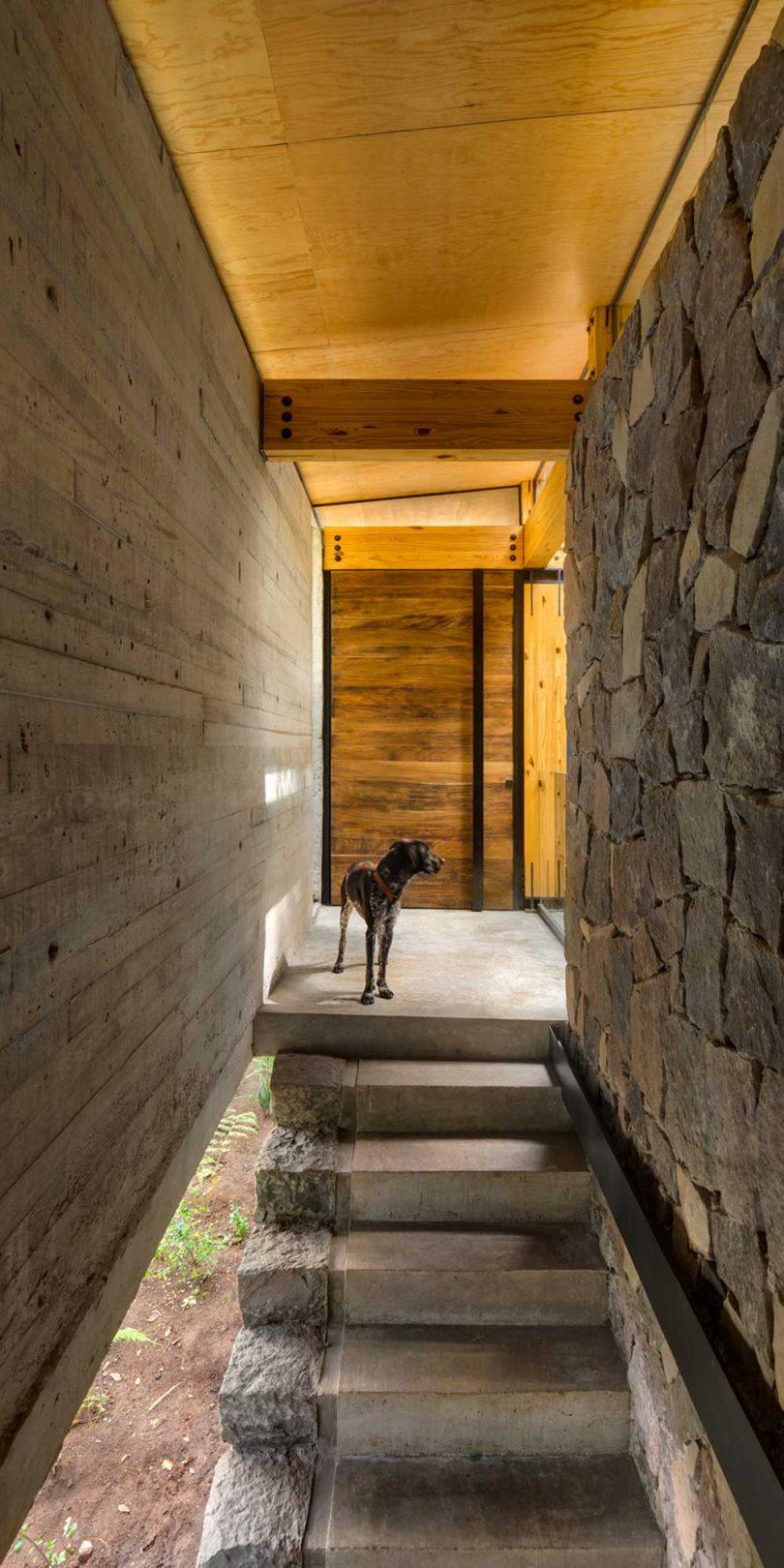 Escalera exterior a la entrada de la casa moderna