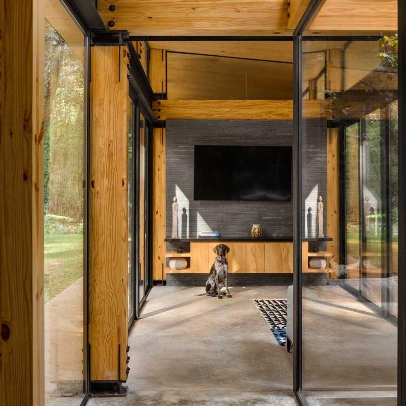 Interior de casa moderna con techos de madera inclinados y ventanas