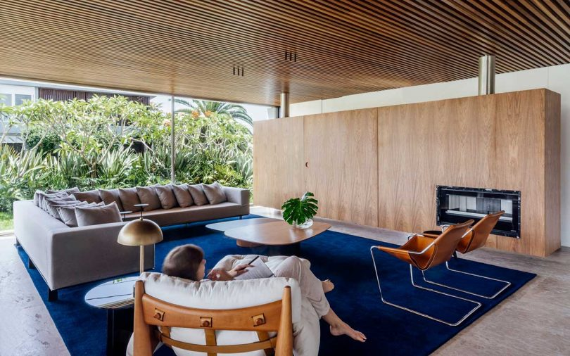 modern interior with bright blue rug in modern house