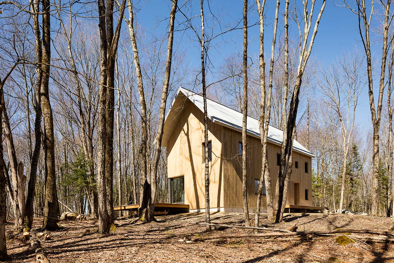 exterior view of entire modern wooden cabin in forest