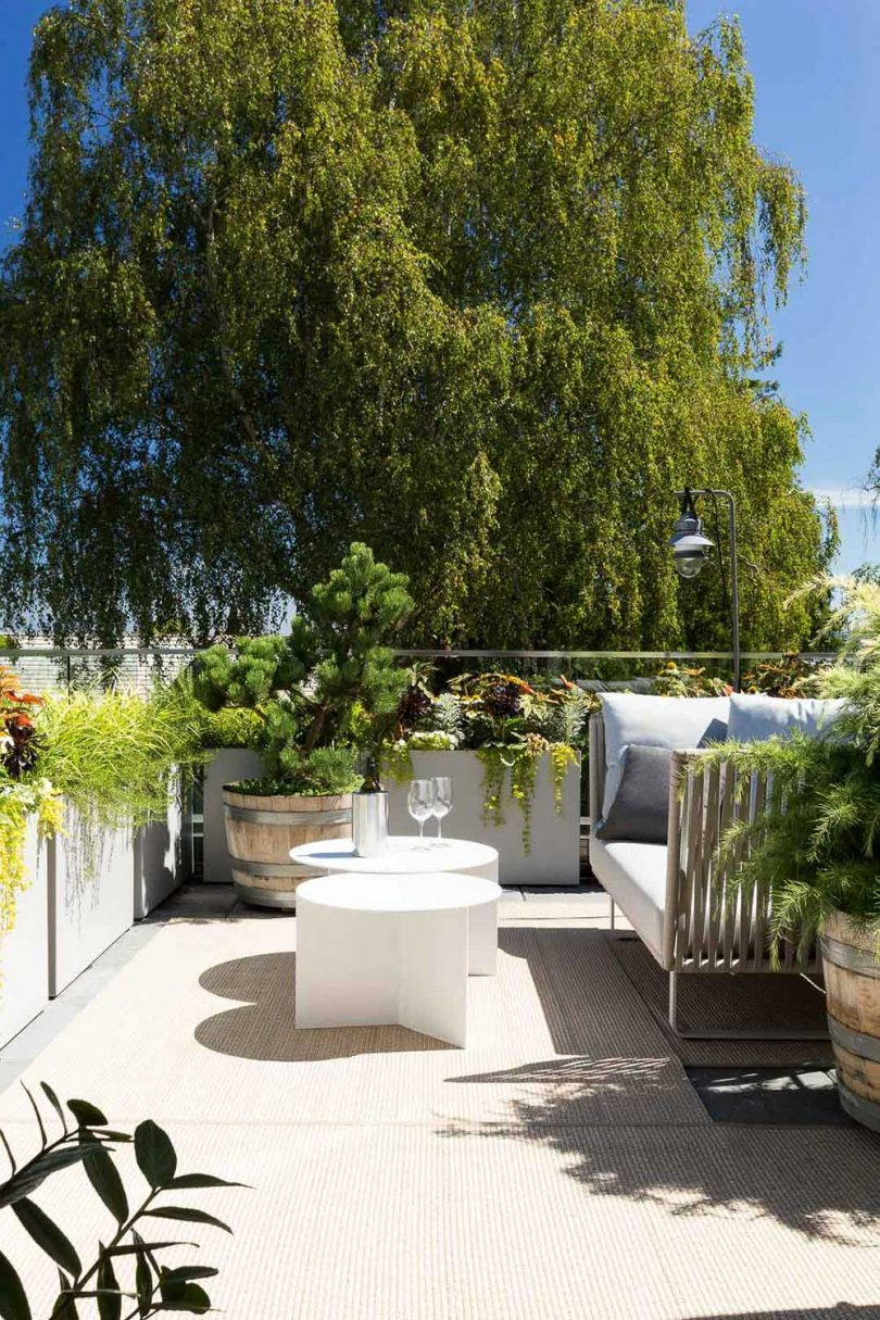 rooftop terrace with seating and plants
