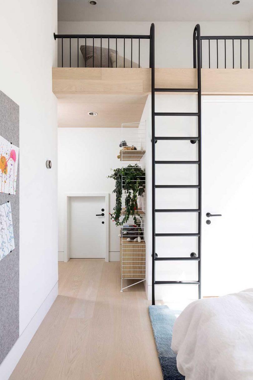 modern interior with ladder to loft