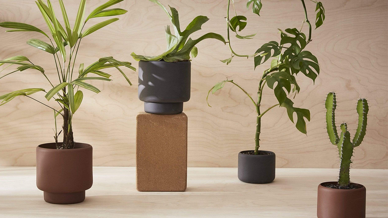 New Conscious Design by Aaron Probyn Elevates Your Everyday
