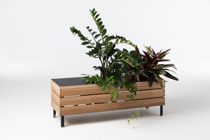 elongated wooden planter